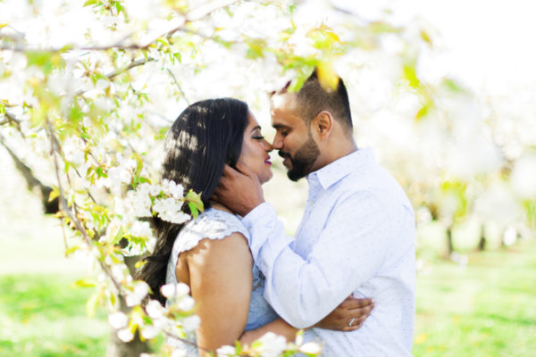 Vineland Cherry Blossom Engagement